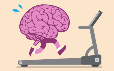 The brain loves exercise!